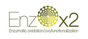 EnzoOX2