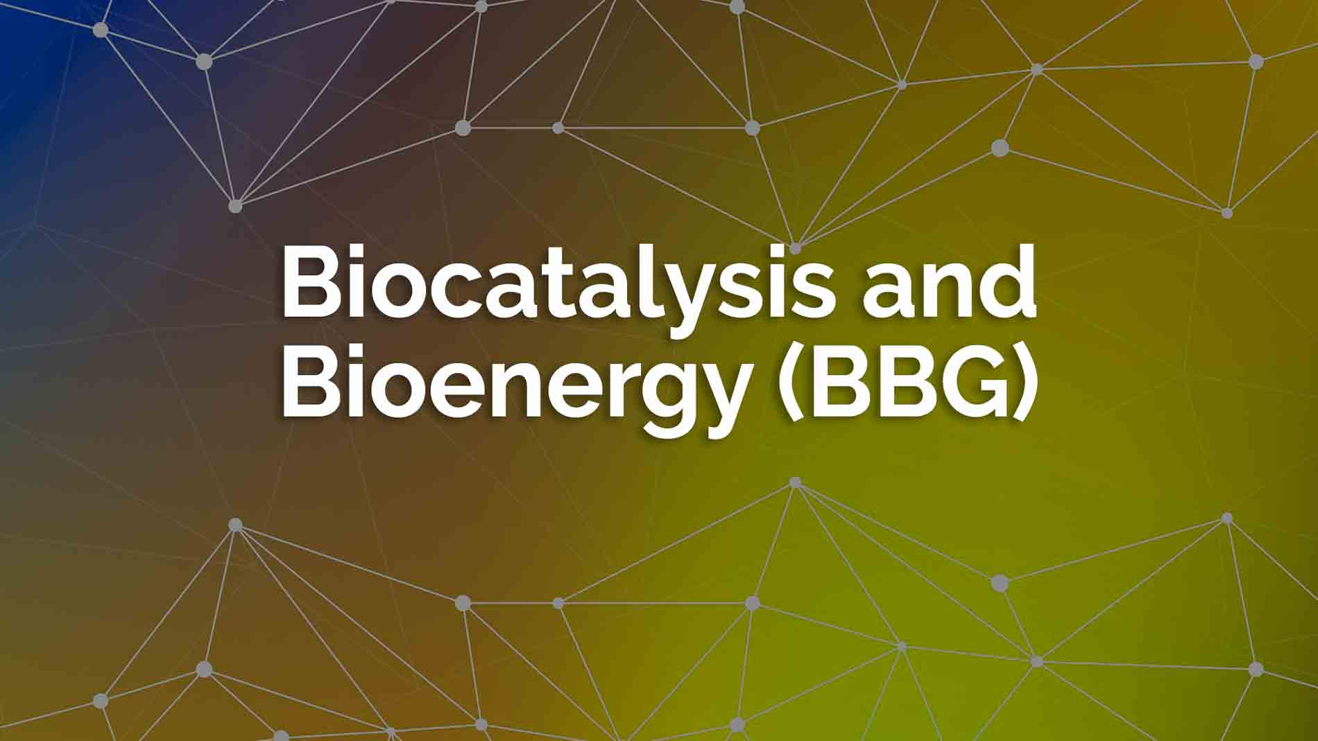 Biocatalysis Bioenergy 1