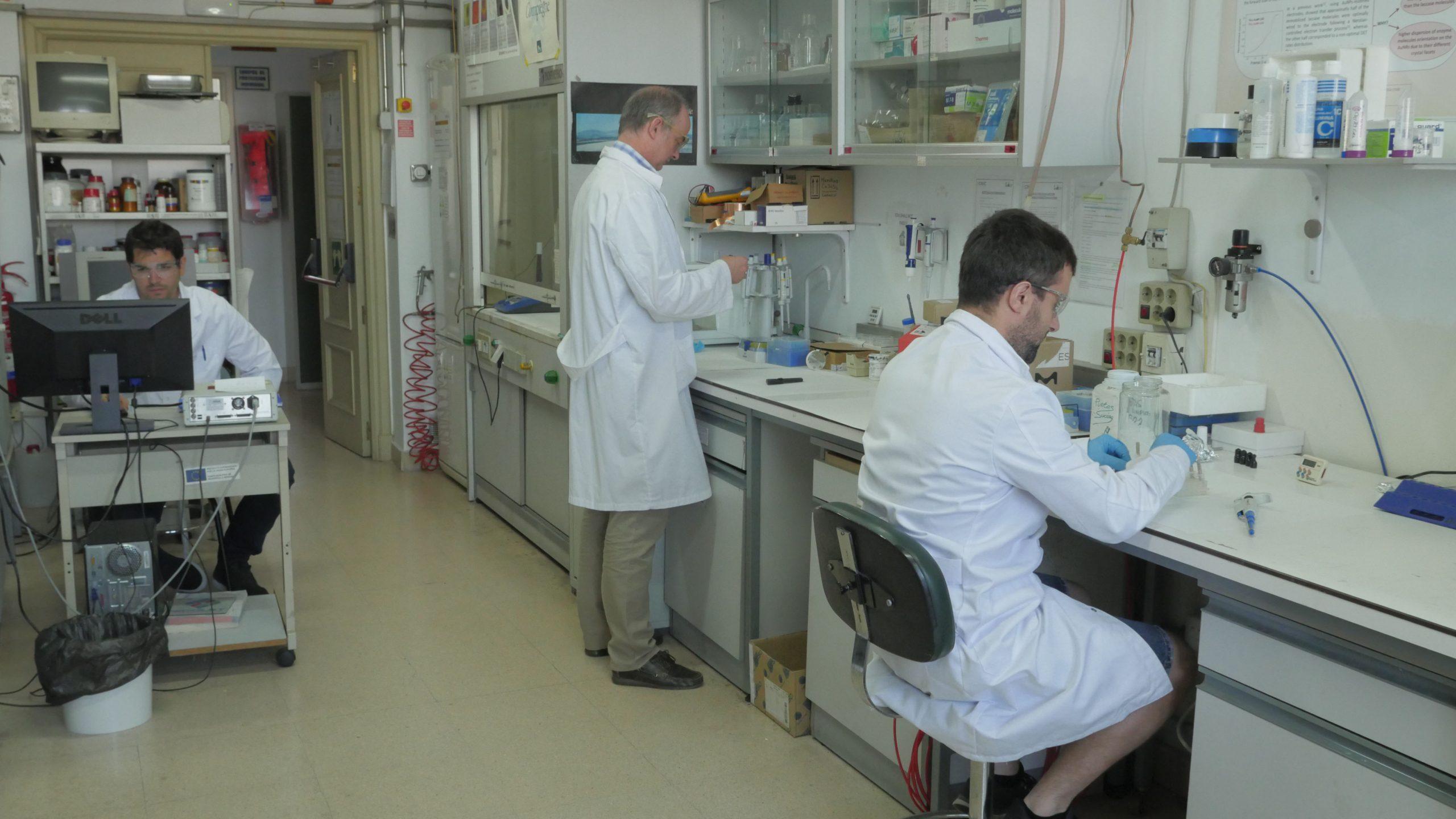 Bioelectrocatálisis06 scaled