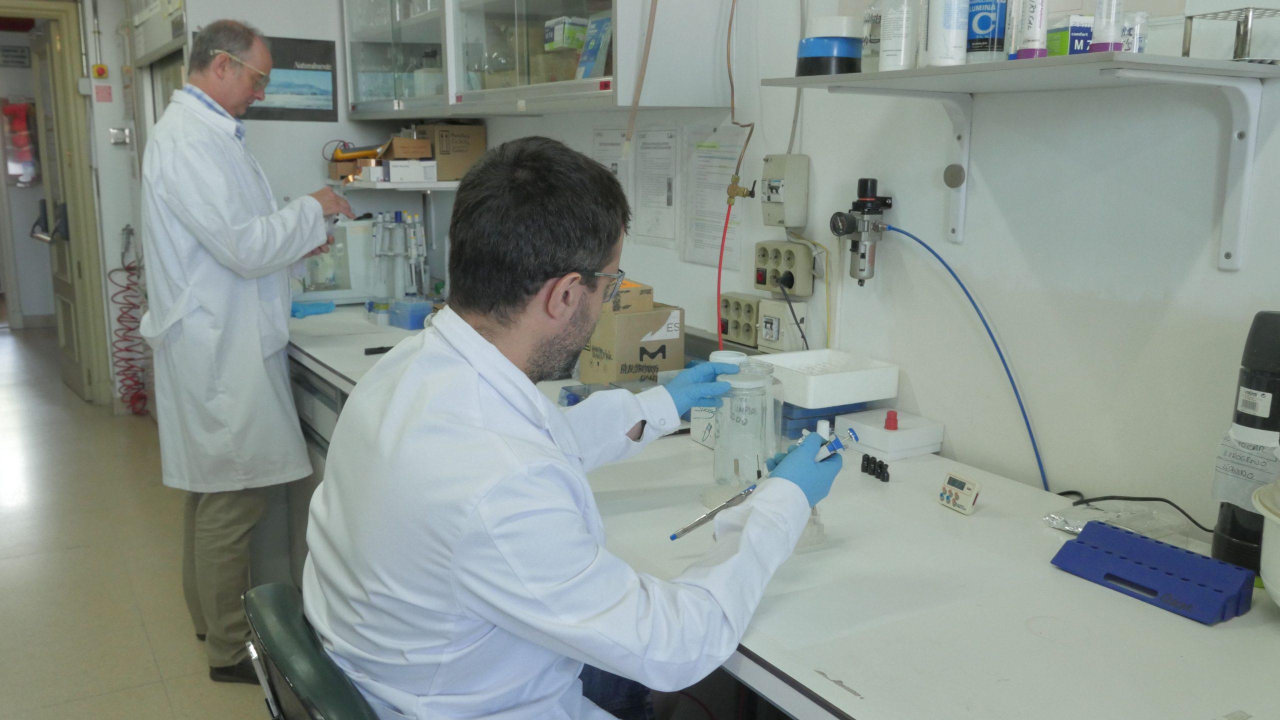 Bioelectrocatálisis08 1 scaled