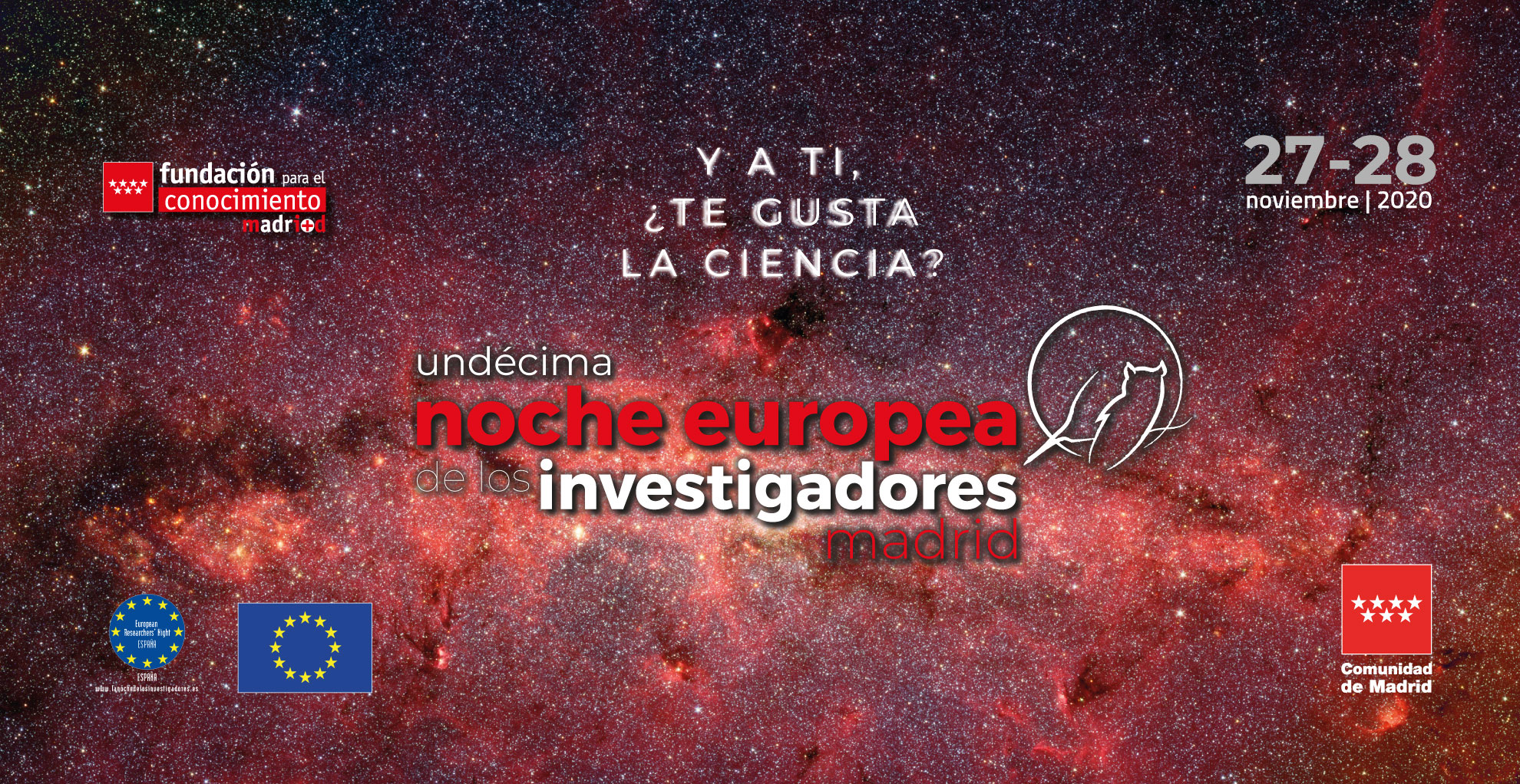 Undecima Noche Investigadores